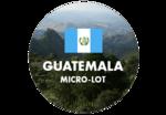Green coffee microlot imported from Las Najavas, Guatemala.