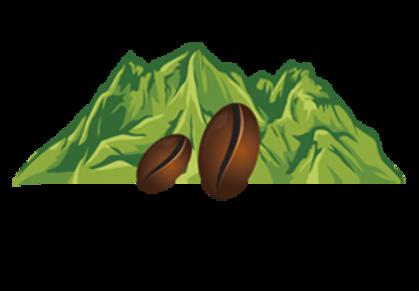 Green coffee imported from Guama Danta, Honduras.