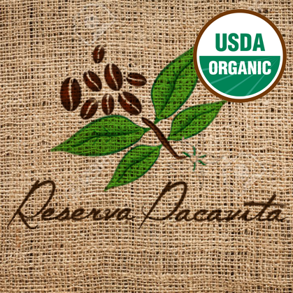 Organic Green Coffee from Honduras