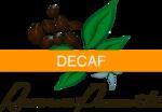 Decaf Organic Green Coffee from Honduras