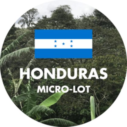 Green Coffee from Honduras