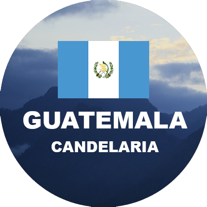 Green coffee imported - Guatemala