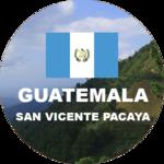 Guatemalan green coffee