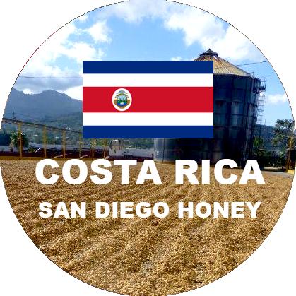 Costa Rica Green Coffee