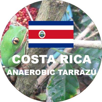 Anaerobic Process green coffee