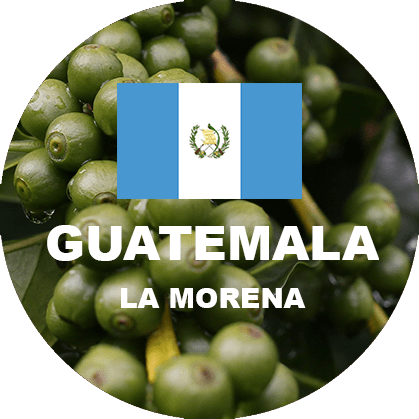 Guatemala Huehue green coffee