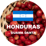 Honduras green coffee