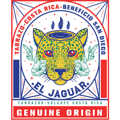 Costa Rica Tarrazu Honey - Jaguar Program - Art by @ninabotanica