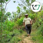 Santo Domingo coffee farmer