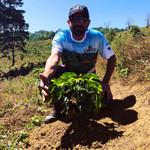 La Lesquinada Coffee Farm, Copan,HN